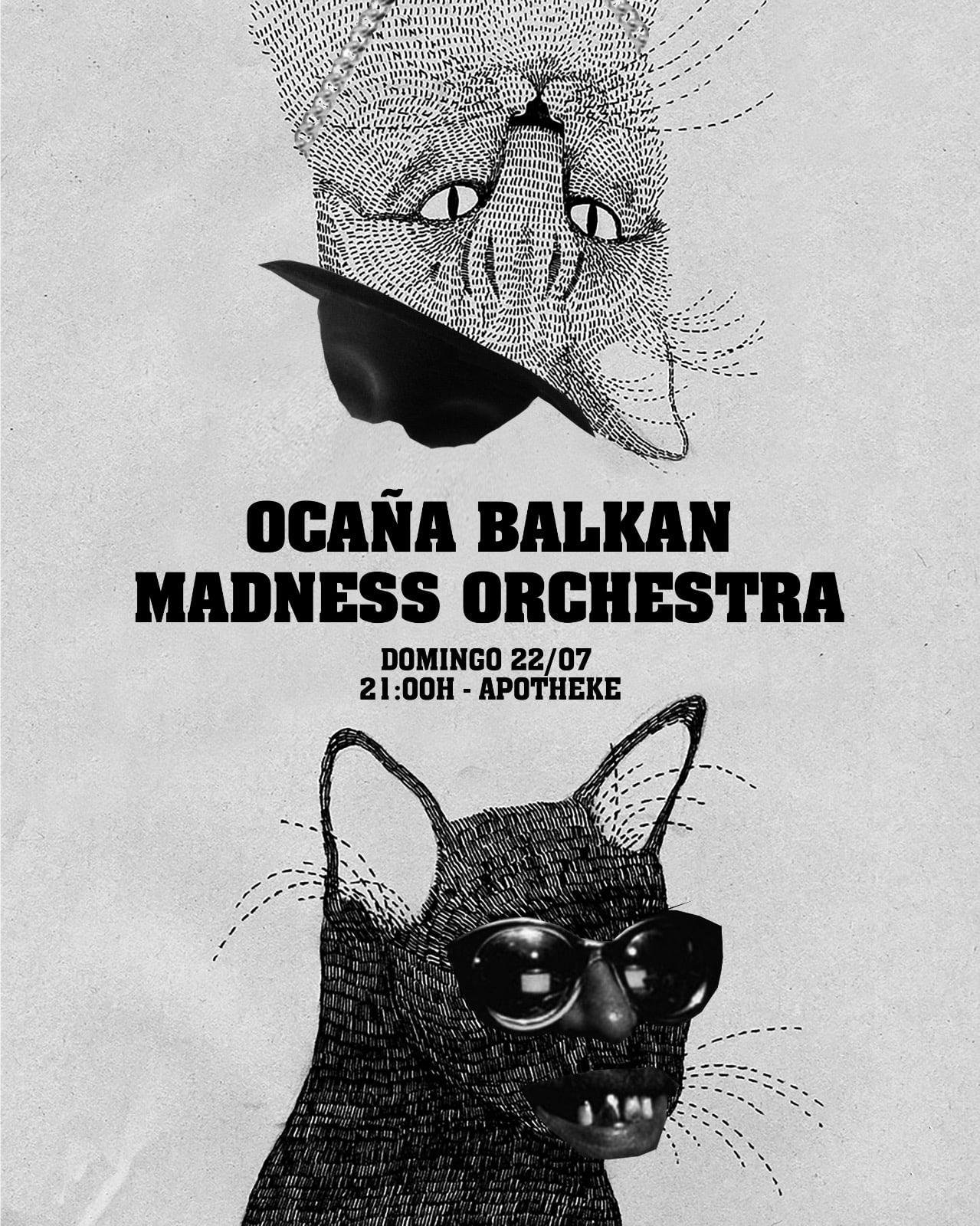 Próximo sábado con la Balkan Madness Orchestra